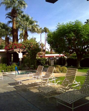 Desert Hills Hotel : The jacuzzi is adjacent to the pool area