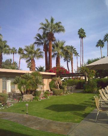 Desert Hills Hotel : Great landscaping