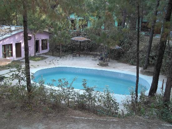 Swimming pool picture of jungle resort retreat anand - Hotels in lansdowne with swimming pool ...