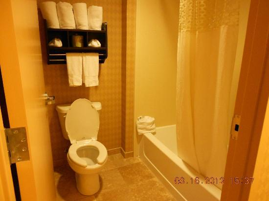 Hampton Inn Knoxville North: Toilet/bath area