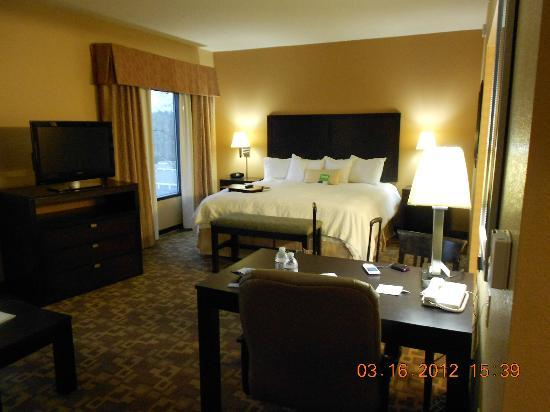 Hampton Inn Knoxville North: Suite