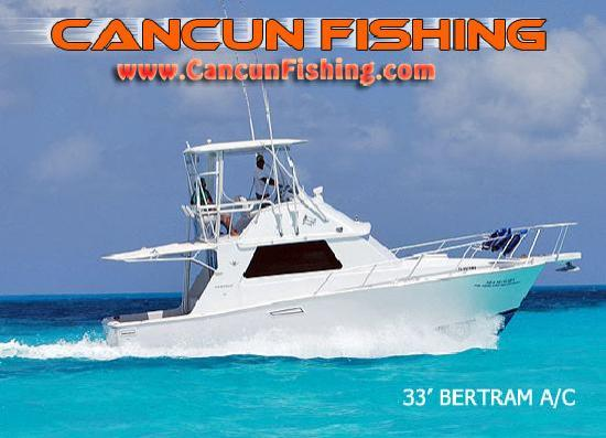 Marlin sailfish tuna wahoo and more picture of cancun for Cancun fishing trips
