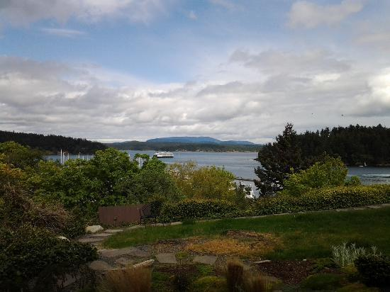 Friday Harbor House : In my room looking out with the slider open.  Yes, I am in the room taking this picture!