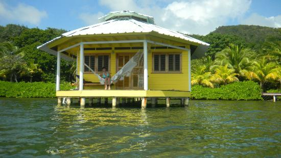 Mango Creek Lodge: Over-the-water bungalow