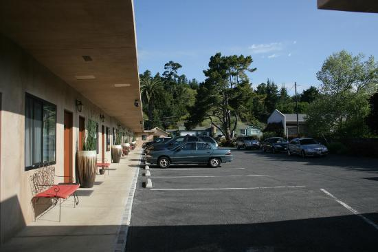 Cambria Palms Motel: Parking area in front of rooms