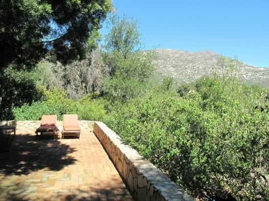 Rancho La Puerta Spa: View from front door of Villa S-9