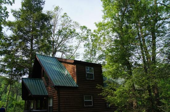 Sunset Cottage Rentals: Bear's Hideaway Cabin