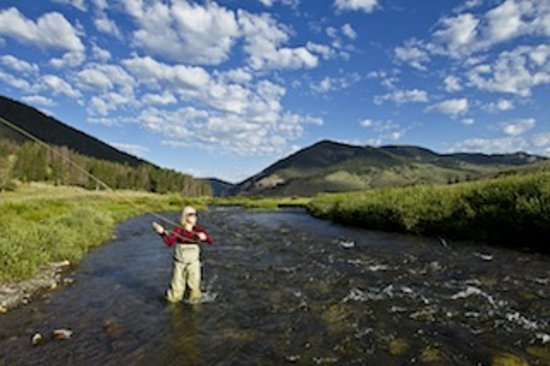 Grizzly bear fly fishing picture of lone peak outfitters for Gallatin fishing report