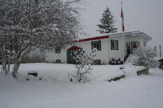 Red Top Bed and Breakfast: Winter
