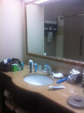 Hampton Inn Jupiter / Juno Beach: bathroom