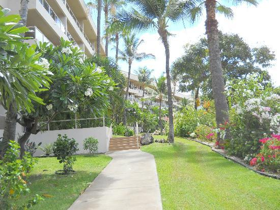 Aston at the Maui Banyan: property