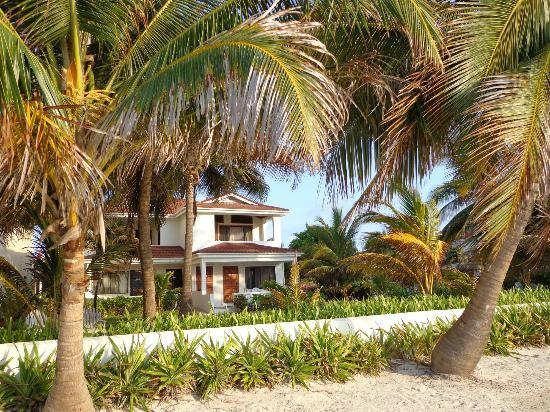 Belize Tradewinds Paradise Villas: View from the beach