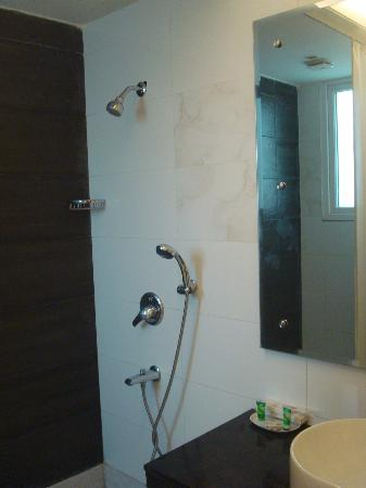 Alpina Hotels & Suites: shower