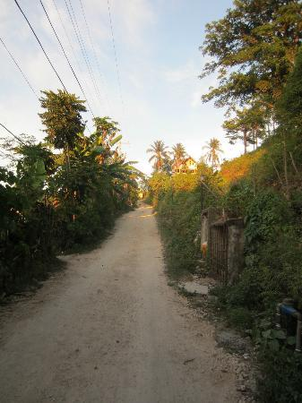 Hotel Soffia Boracay: Treacherous, steep dirt road leading to hotel entrance; ~100 meters long;