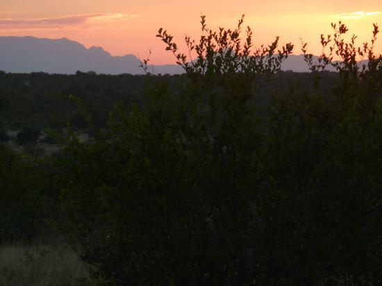 Toro Yaka Bush Lodge: sunset on safari