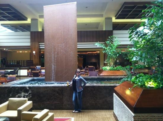 Hyatt Lisle: Lobby Fountain