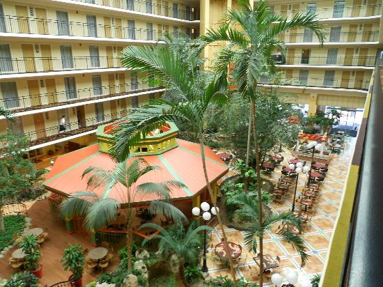 Embassy Suites Orlando/Lake Buena Vista Resort: beautiful restaurant/bar