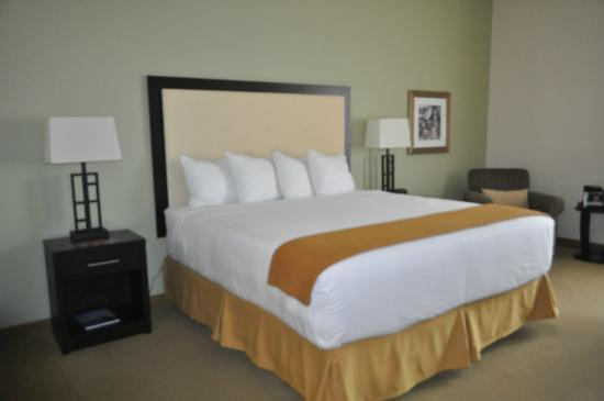 Holiday Inn Express Myrtle Beach-Broadway @ the Beach: Very clean guestrooms.