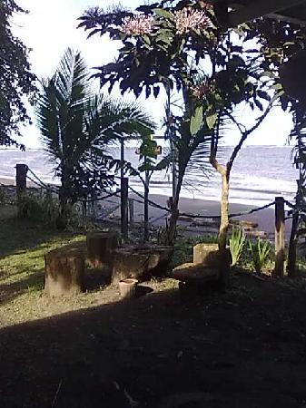 Photo of La Bokana Lodge & Restaurant Tortuguero
