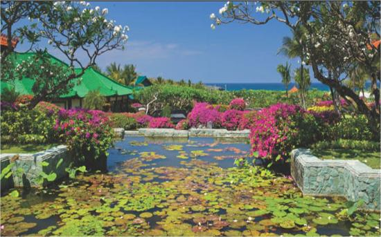 Garden Tour At Bali Hyatt  Sanur  Indonesia   Address