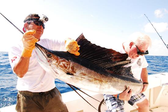 Fishing Cancun Best Light Tackle Fishing In Cancun And