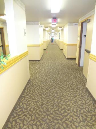 La Quinta Inn &amp; Suites Kalispell: hallway on top floor