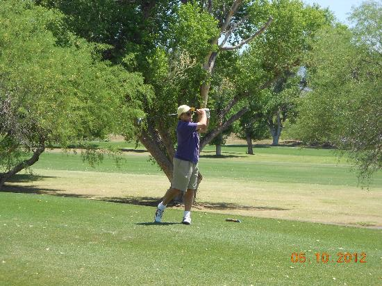 Tubac Golf Resort & Spa: Golf Course ...so beautiful and lush