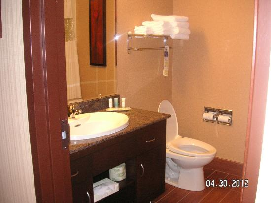 Quality Inn & Suites Levis: bathroom suite 218
