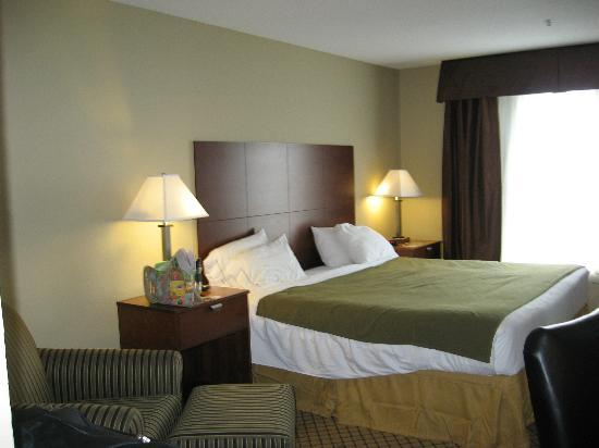 Holiday Inn Express Hotel & Suites Starkville, MS: King Bed