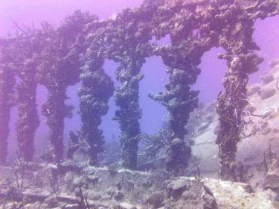 We Be Diving: Rhone Underwater