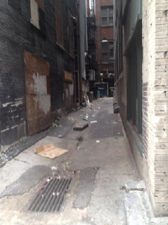 BEST WESTERN Plus Envy Hotel: Alley next door that at night FILLS with RATS!