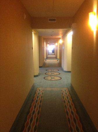 Holiday Inn Express Myrtle Beach-Broadway @ the Beach: the hall