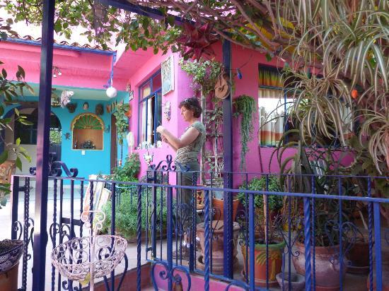 Casapapaya B&B: Courtyard