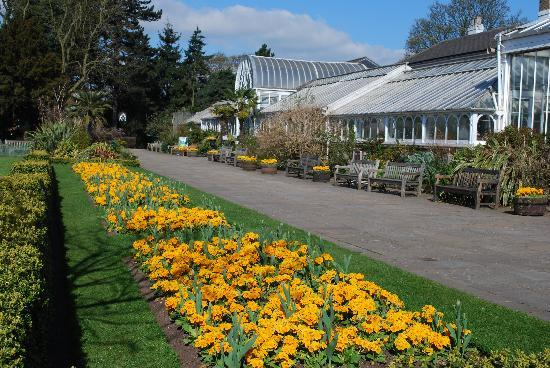 Birmingham Botanical Gardens And Glasshouses England Address Phone Number Attraction