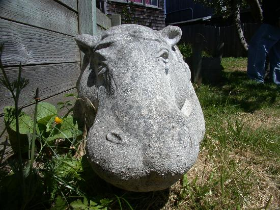 Nicholson House Inn: Hippo Bench