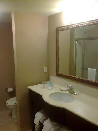 Hampton Inn & Suites Westford - Chelmsford: Bathroom