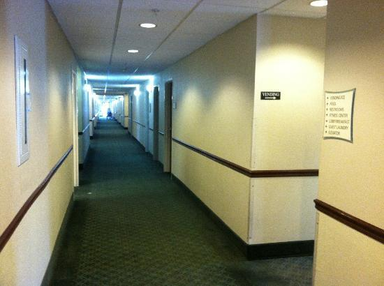 Days Inn And Suites Houston IAH Airport: Hallway to our room