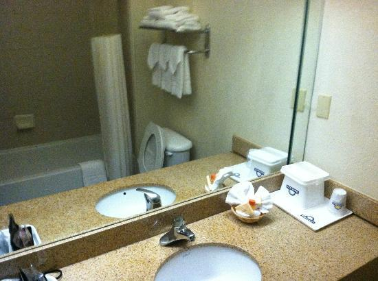 Days Inn And Suites Houston IAH Airport: Bathroom