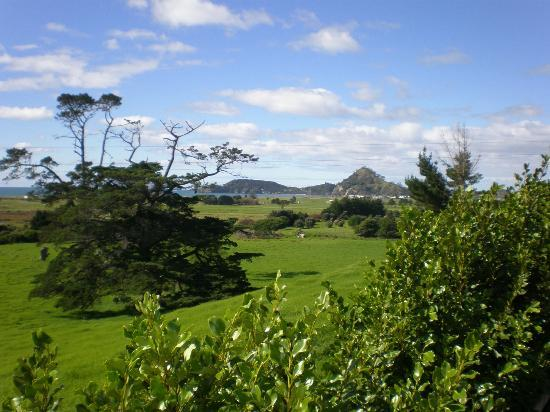 Tahi: View from Hiwi house