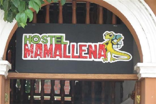 Photo of Hostel Mamallena Cartagena