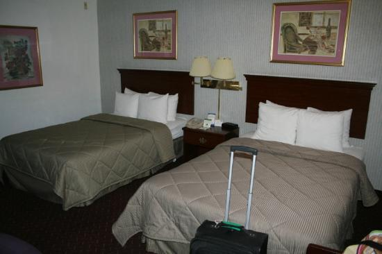 Comfort Inn Airport: beds