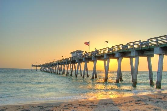 venice fishing pier reviews venice fl attractions