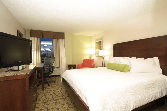 Hilton Garden Inn University Place, Pittsburgh: Evolution Standard Guest Room