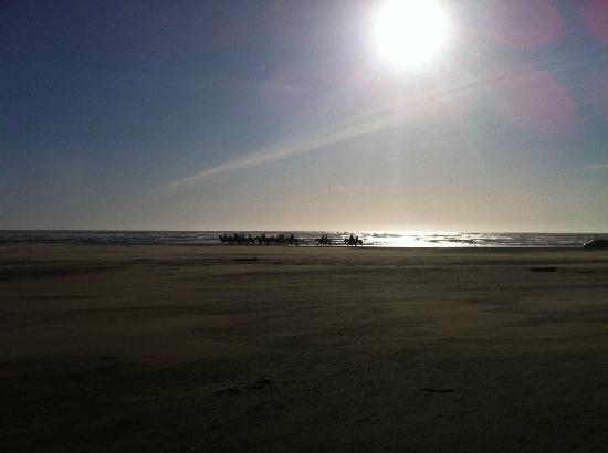 Judith Ann Inn: Sunset Horseback riding at Ocean Shores