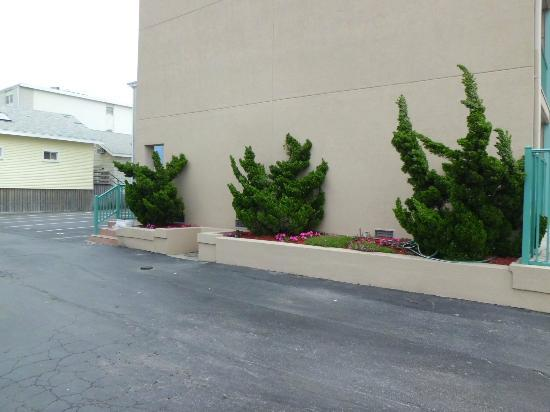 Howard Johnson Oceanfront Hotel: Beautiful landscaping