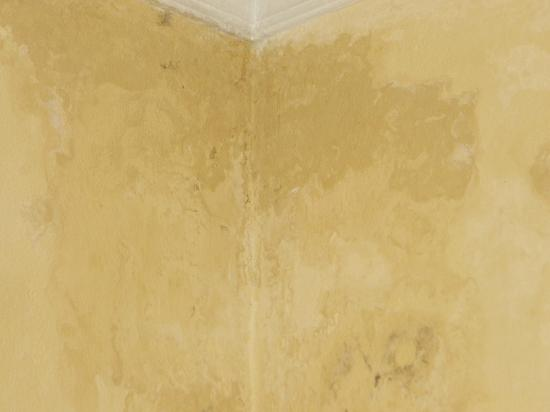 Hotel Alinari: stain on wall