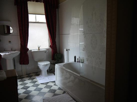 Plas Llwyd: Half the bathroom...