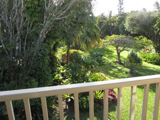 Windward Garden B&B: View of the amazing gardens from the bedroom balcony