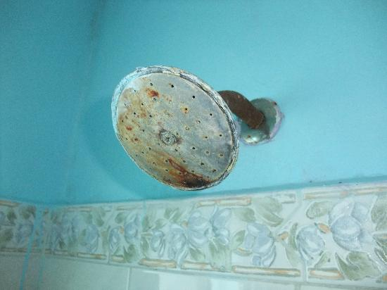 Hotel El Caracol: Shower
