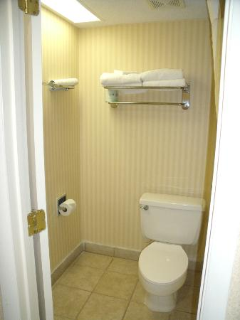 Quality Inn Mount Vernon: Bathroom Toilet